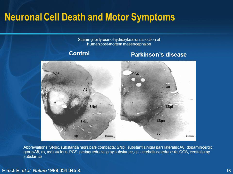 Neuronal Cell Death and Motor Symptoms