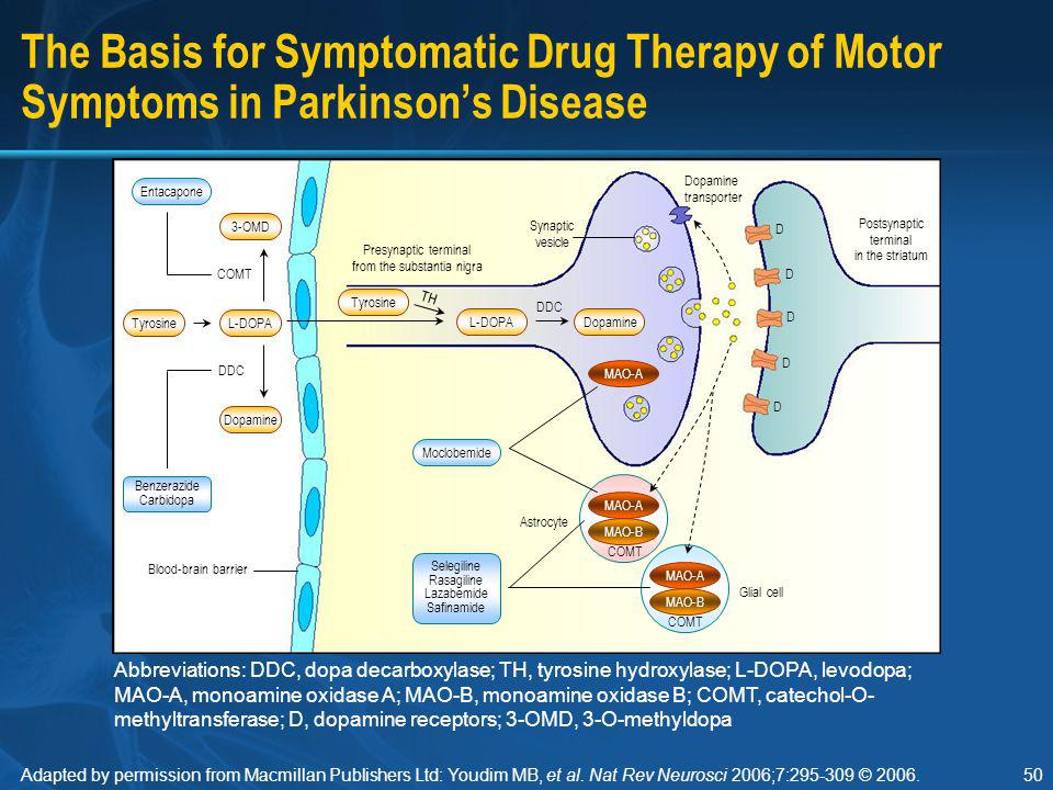 Section I The Basis for Symptomatic Drug Therapy of Motor Symptoms in Parkinson's Disease.
