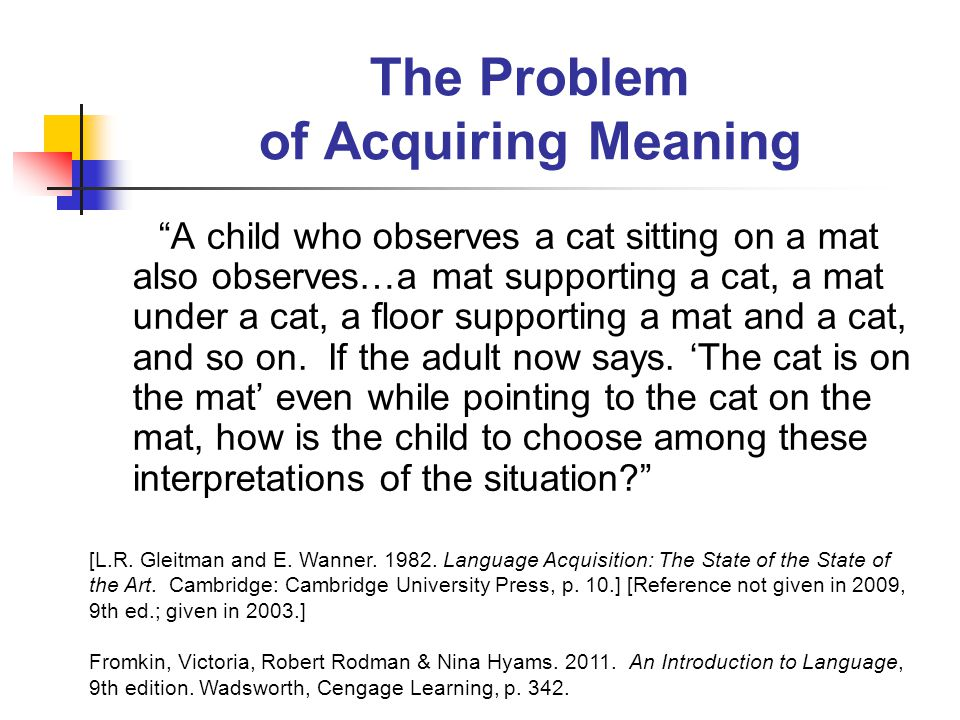 The Problem of Acquiring Meaning