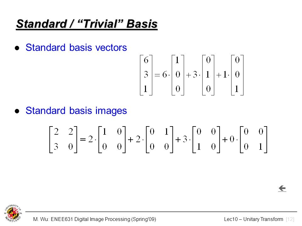 Standard / Trivial Basis