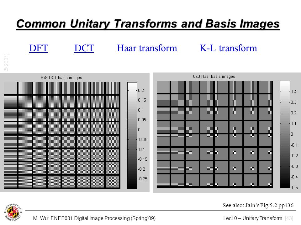 Common Unitary Transforms and Basis Images