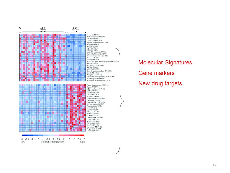 Molecular Signatures Gene markers New drug targets