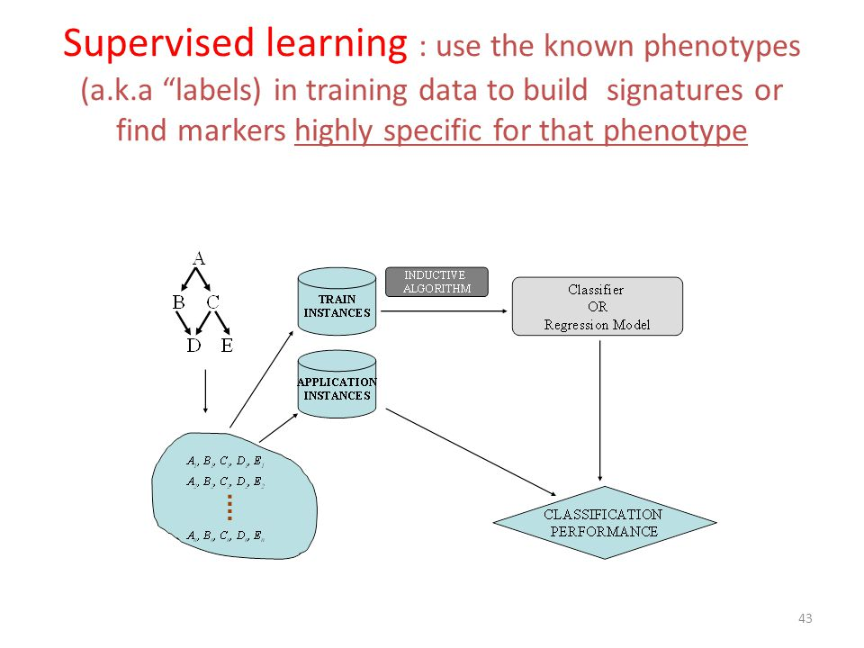Supervised learning : use the known phenotypes (a. k