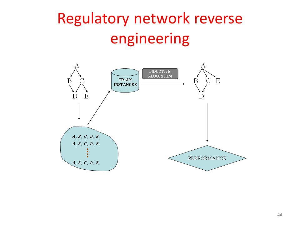 Regulatory network reverse engineering