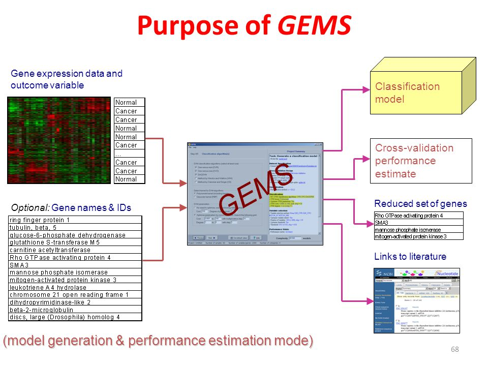 Purpose of GEMS GEMS (model generation & performance estimation mode)