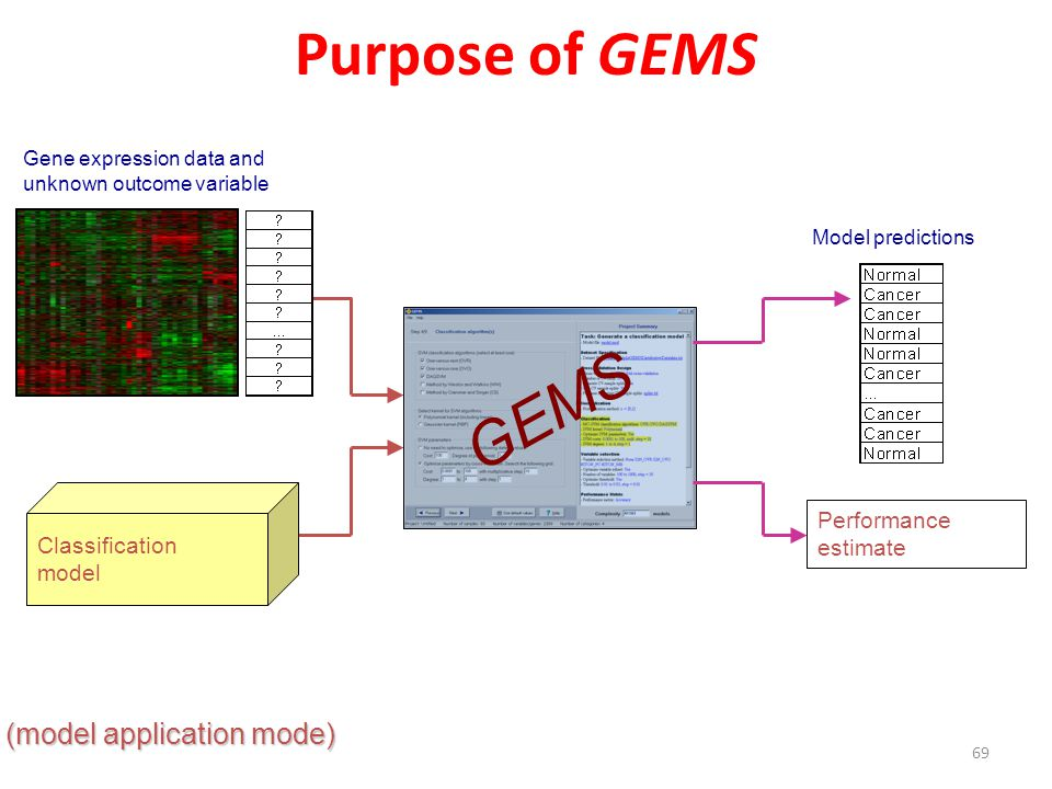 Purpose of GEMS GEMS (model application mode) Performance