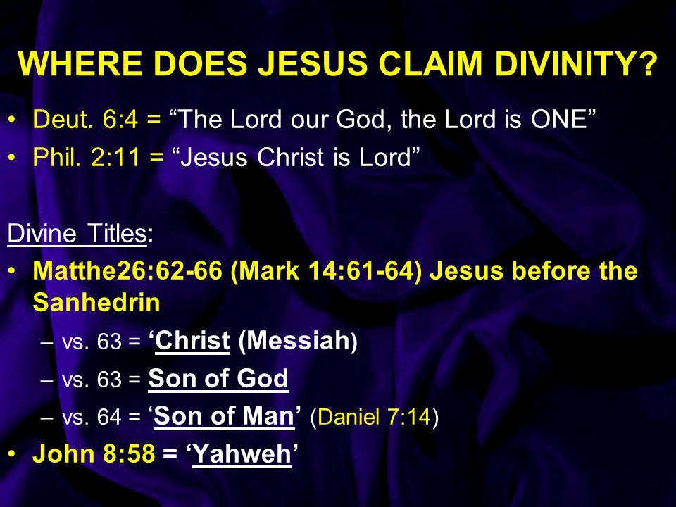 WHERE DOES JESUS CLAIM DIVINITY