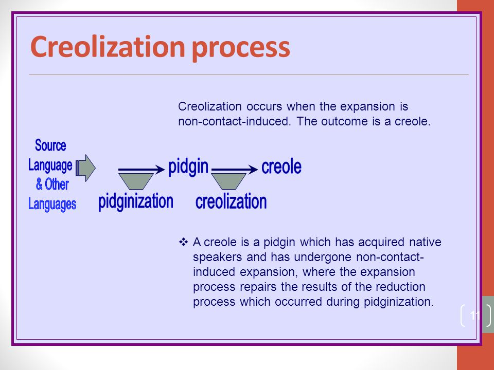Creolization process pidgin creole pidginization Source Language