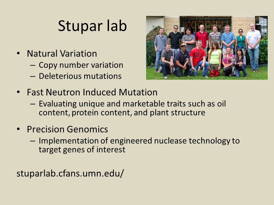 Stupar lab Natural Variation Fast Neutron Induced Mutation