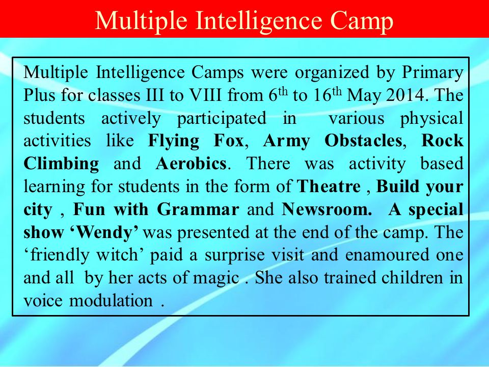 Multiple Intelligence Camp