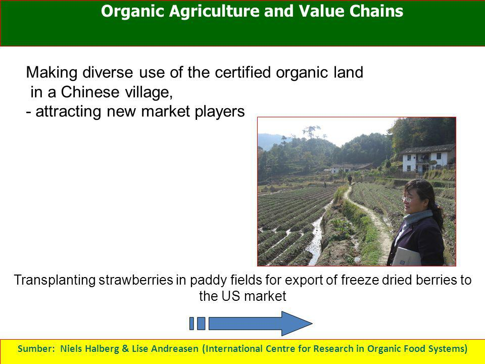 Organic Agriculture and Value Chains