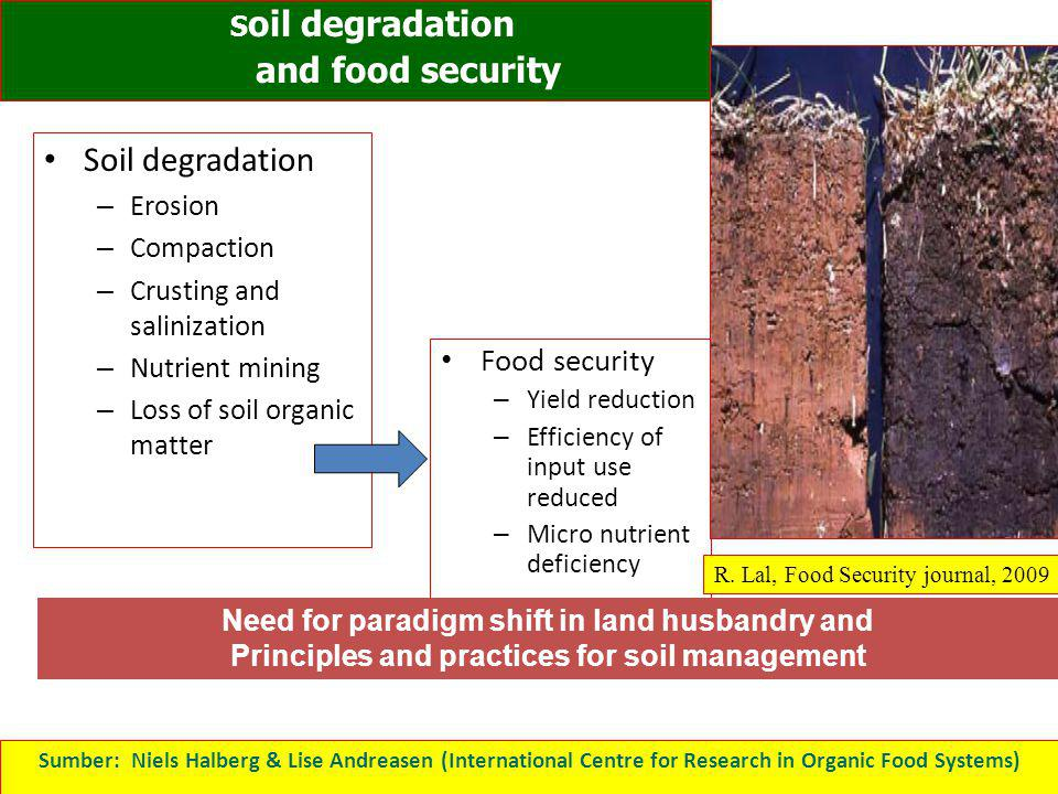 and food security Soil degradation Food security Erosion Compaction