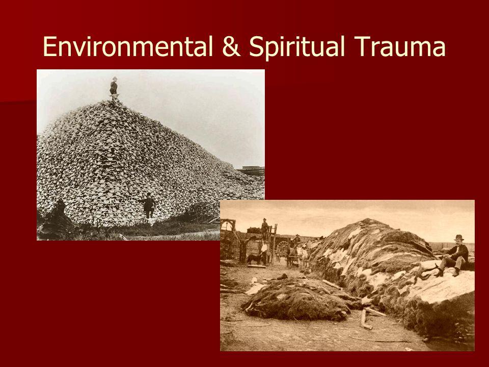 Environmental & Spiritual Trauma