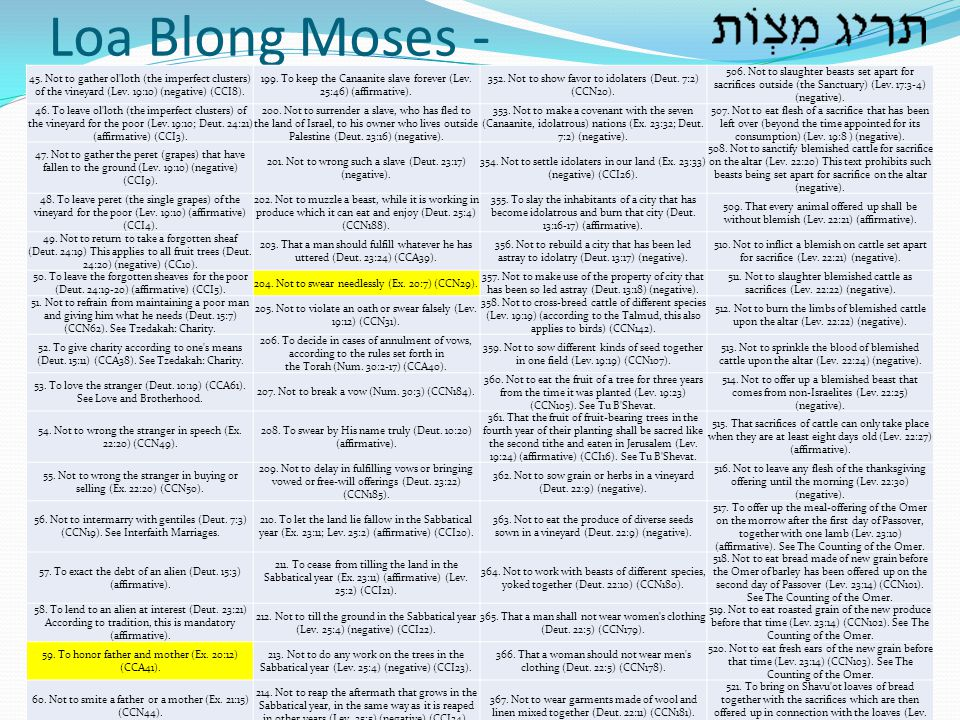 Loa Blong Moses - 45. Not to gather ol loth (the imperfect clusters) of the vineyard (Lev. 19:10) (negative) (CCI8).