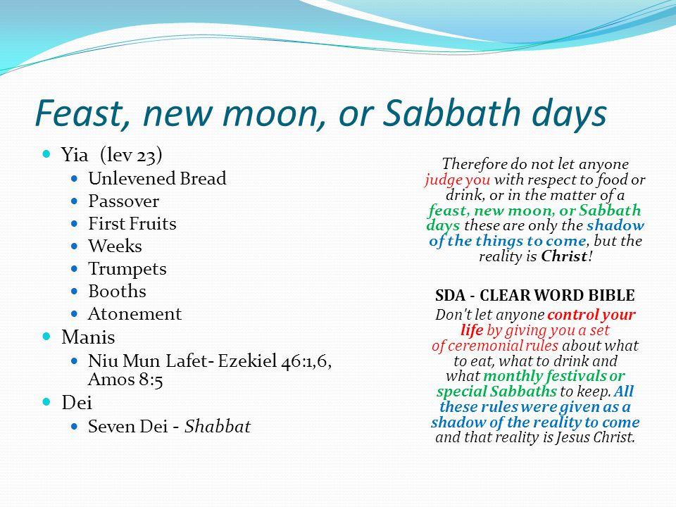 Feast, new moon, or Sabbath days