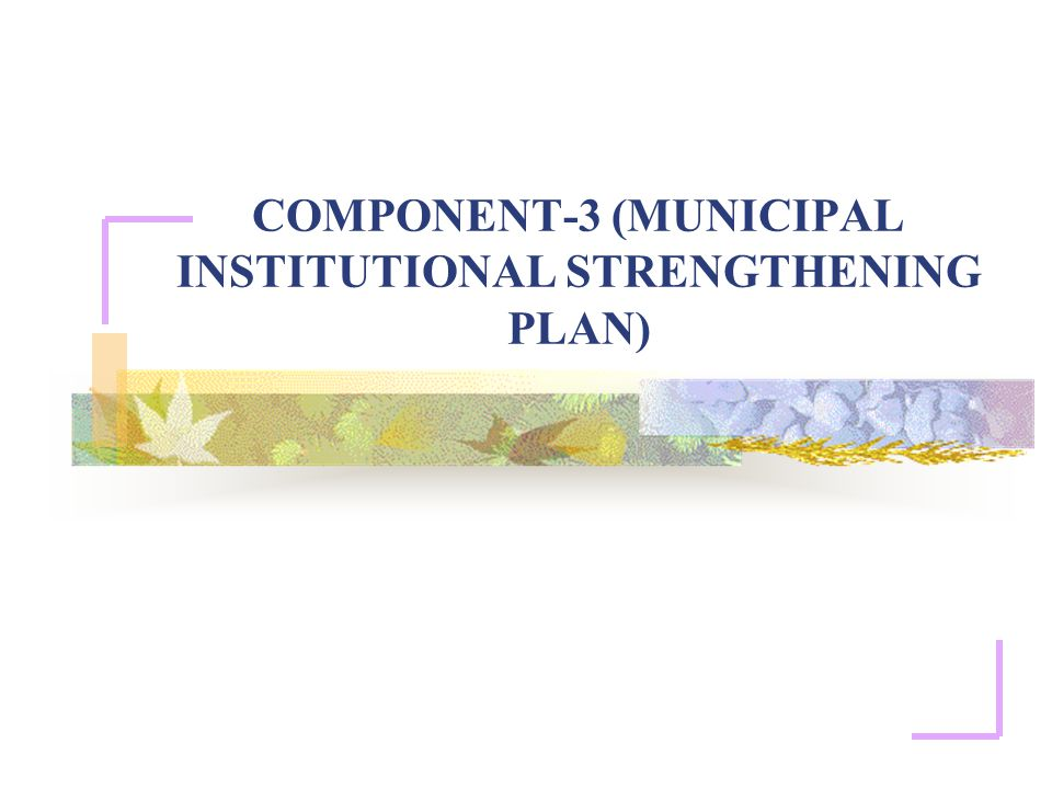 COMPONENT-3 (MUNICIPAL INSTITUTIONAL STRENGTHENING PLAN)