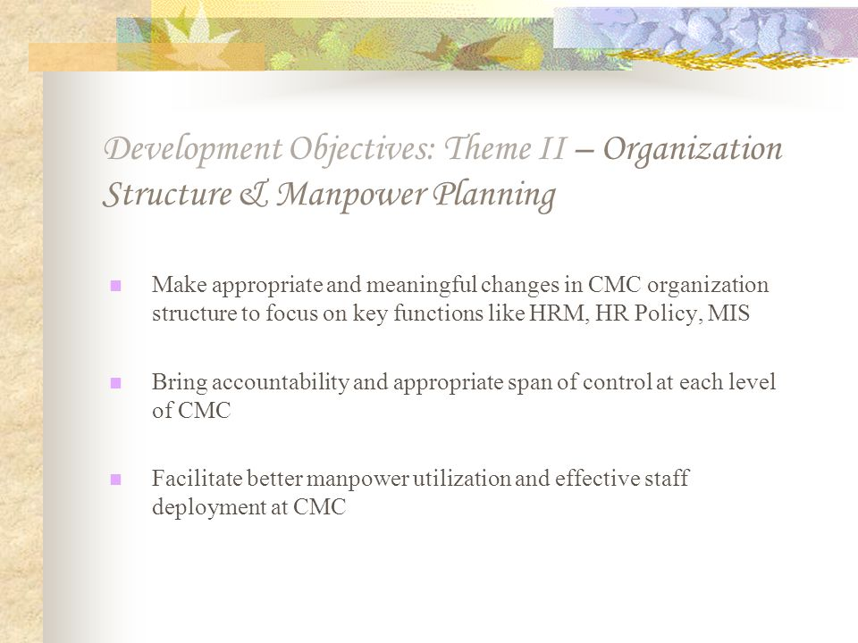 Development Objectives: Theme II – Organization Structure & Manpower Planning