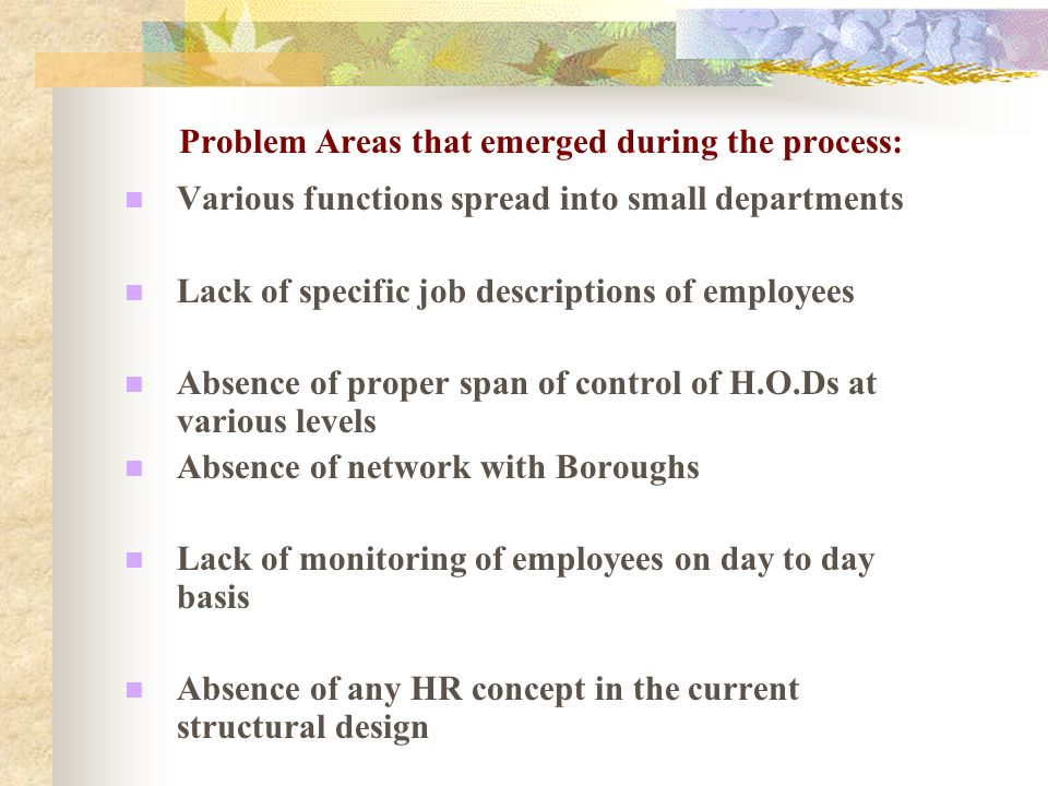 Problem Areas that emerged during the process: