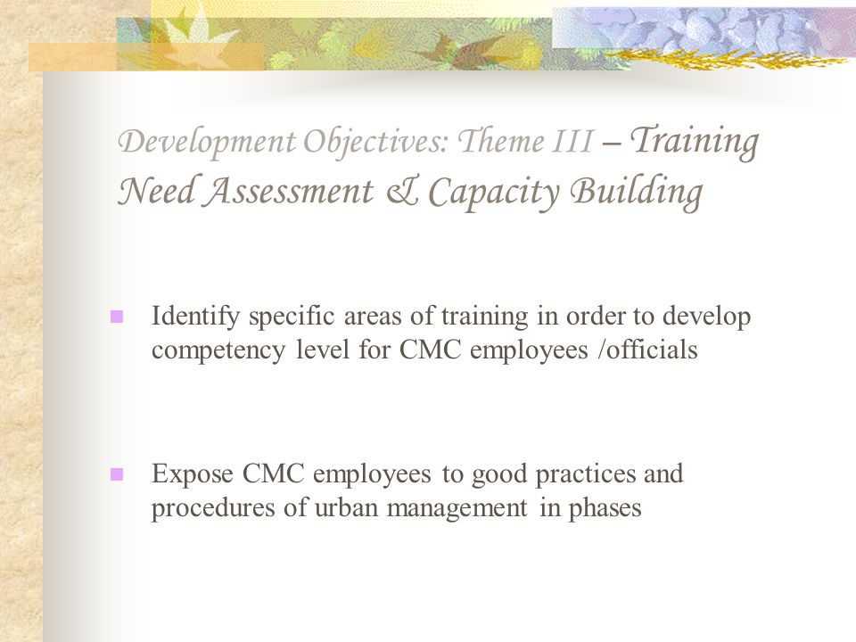 Development Objectives: Theme III – Training Need Assessment & Capacity Building