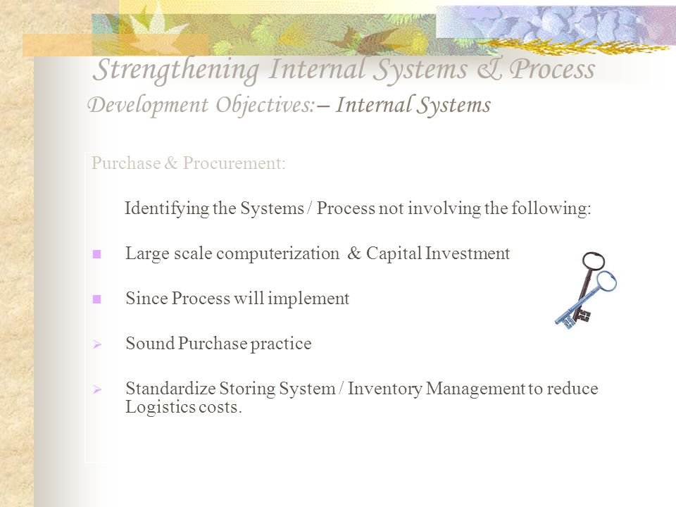 Strengthening Internal Systems & Process Development Objectives:– Internal Systems