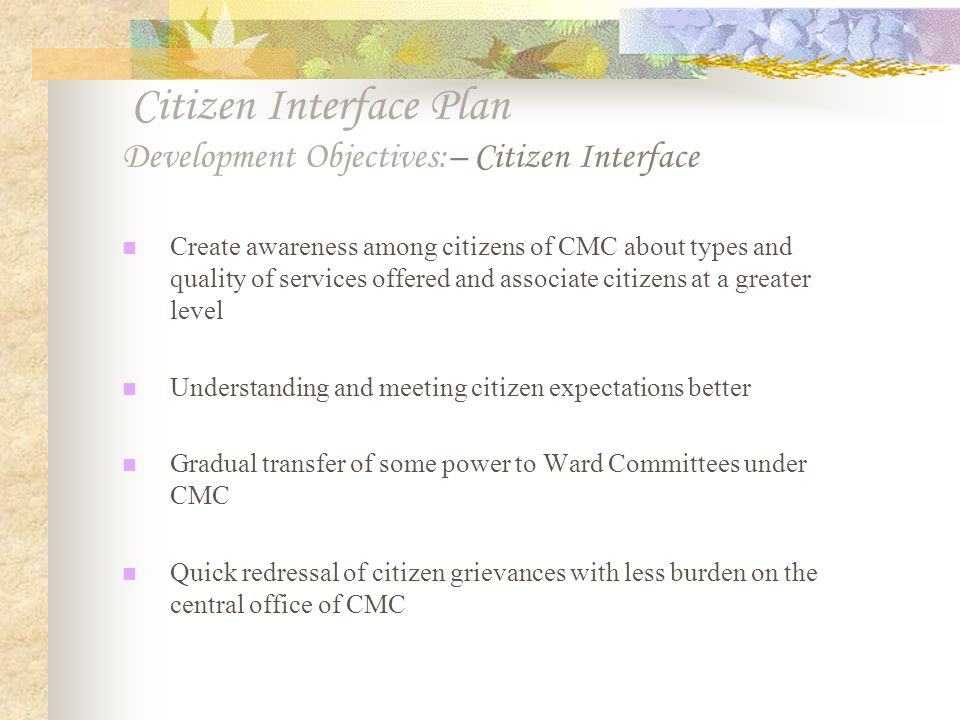Citizen Interface Plan Development Objectives:– Citizen Interface