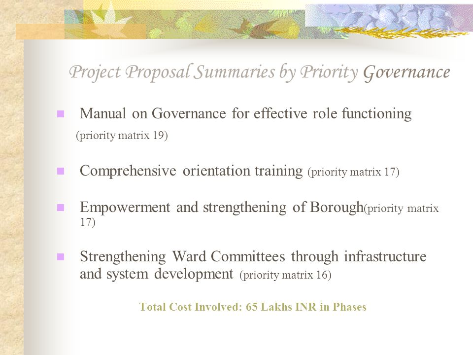 Project Proposal Summaries by Priority Governance