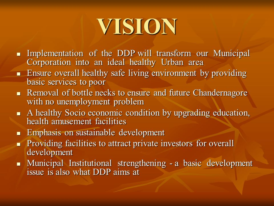 VISION Implementation of the DDP will transform our Municipal Corporation into an ideal healthy Urban area.