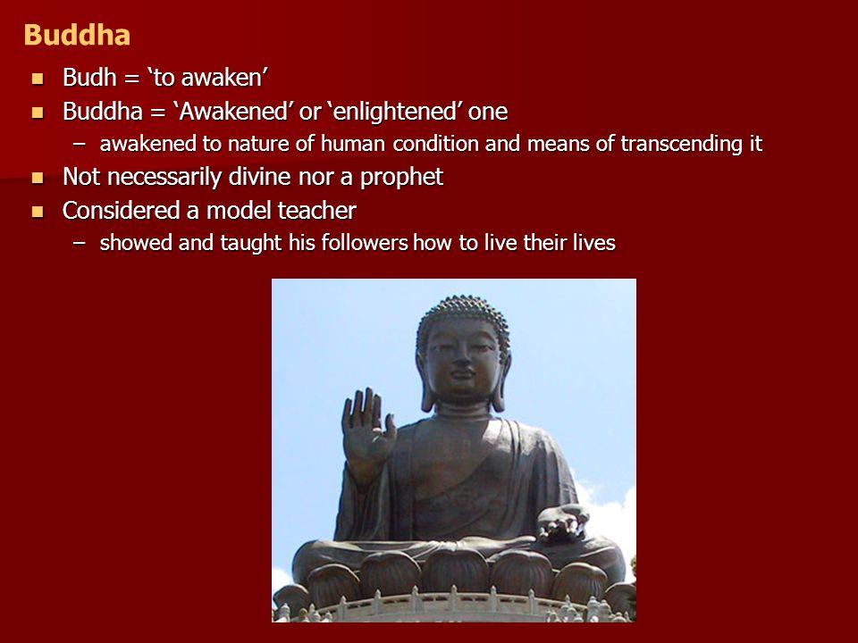 Buddha Budh = 'to awaken' Buddha = 'Awakened' or 'enlightened' one
