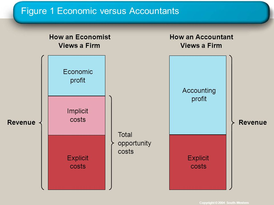 Figure 1 Economic versus Accountants