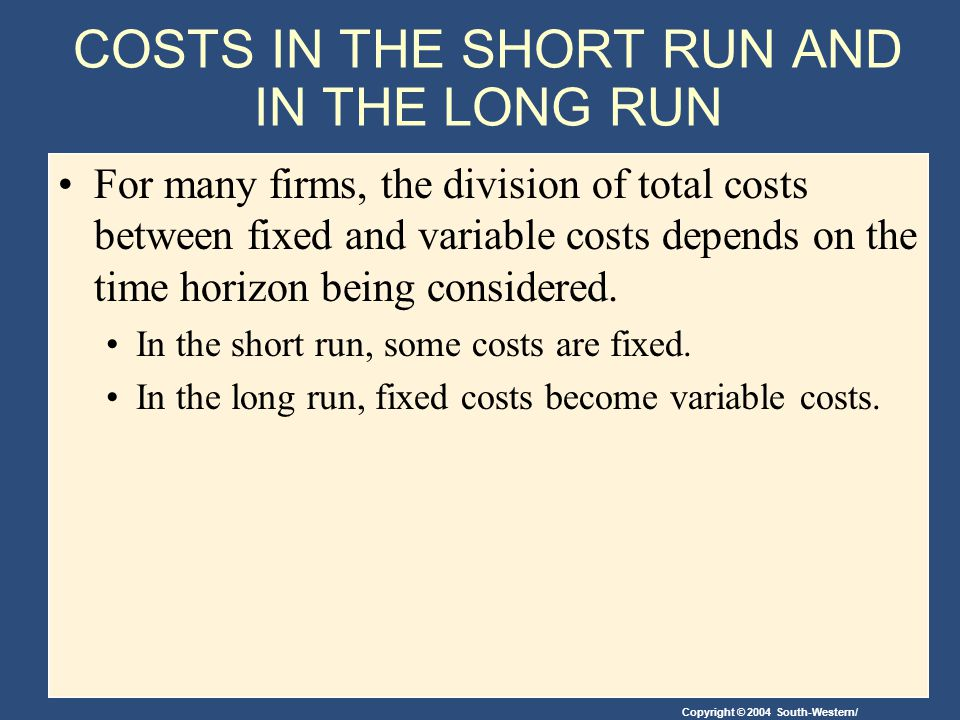 COSTS IN THE SHORT RUN AND IN THE LONG RUN