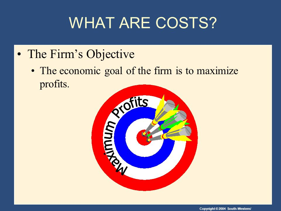 WHAT ARE COSTS The Firm's Objective