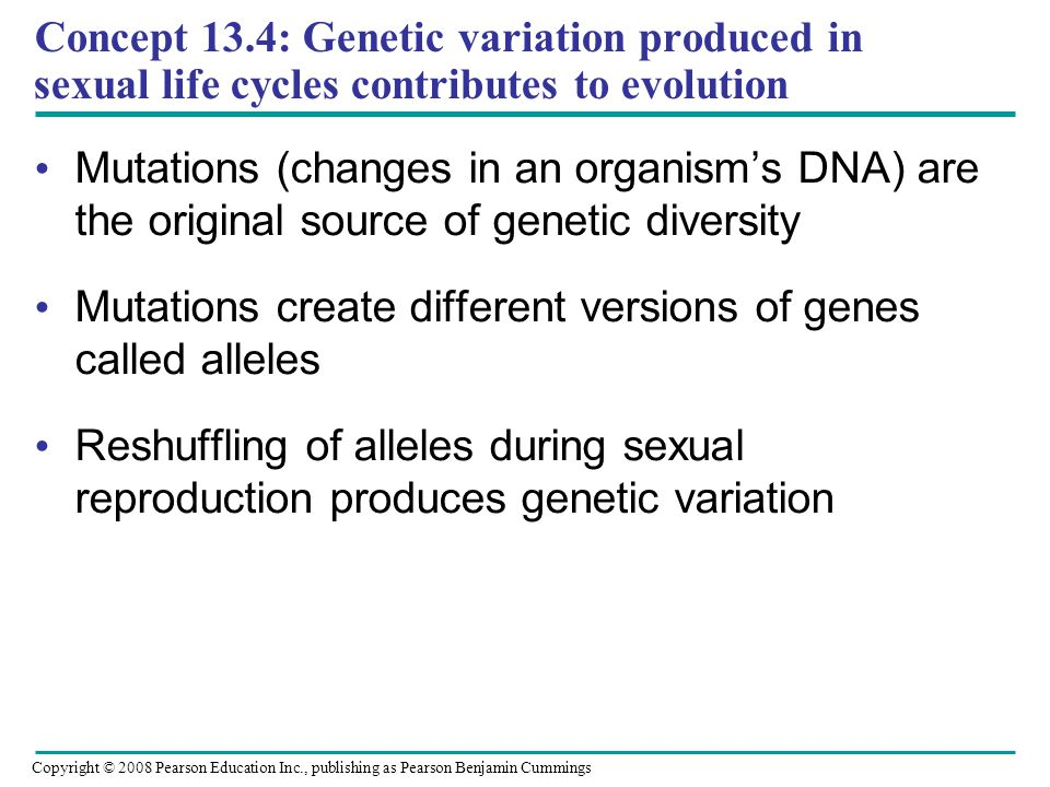 Mutations create different versions of genes called alleles