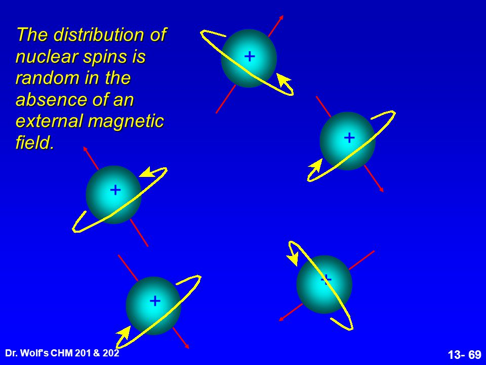 The distribution of nuclear spins is random in the absence of an external magnetic field.