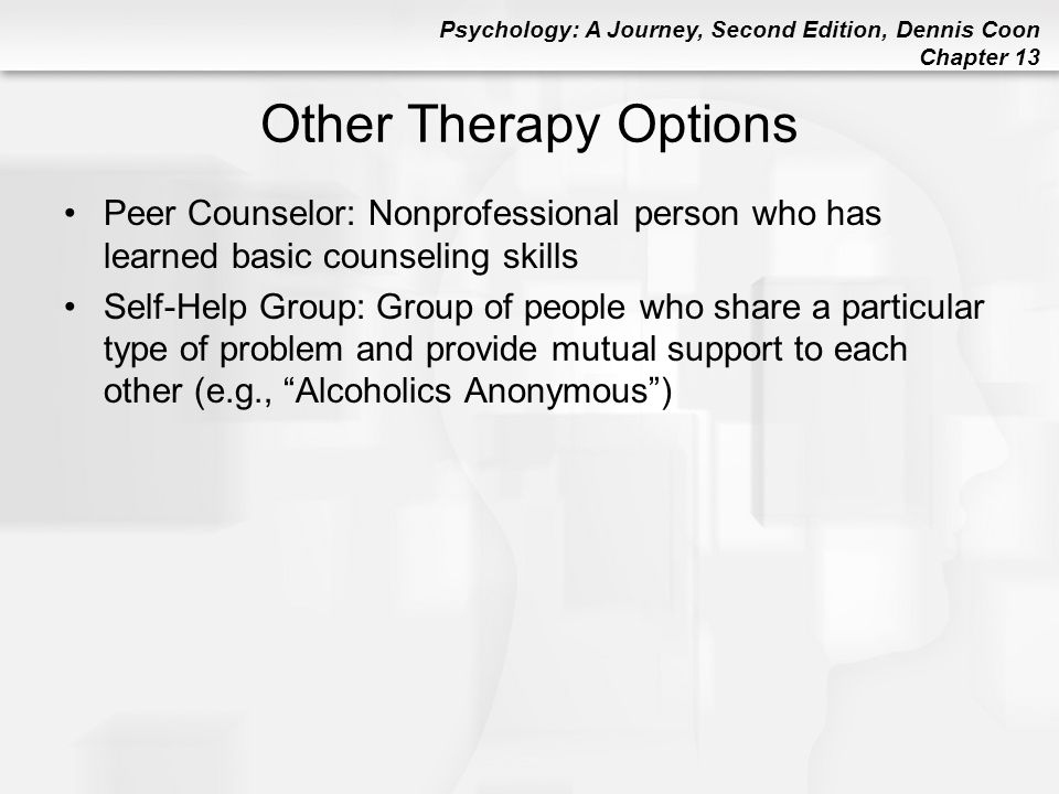 Other Therapy Options Peer Counselor: Nonprofessional person who has learned basic counseling skills.