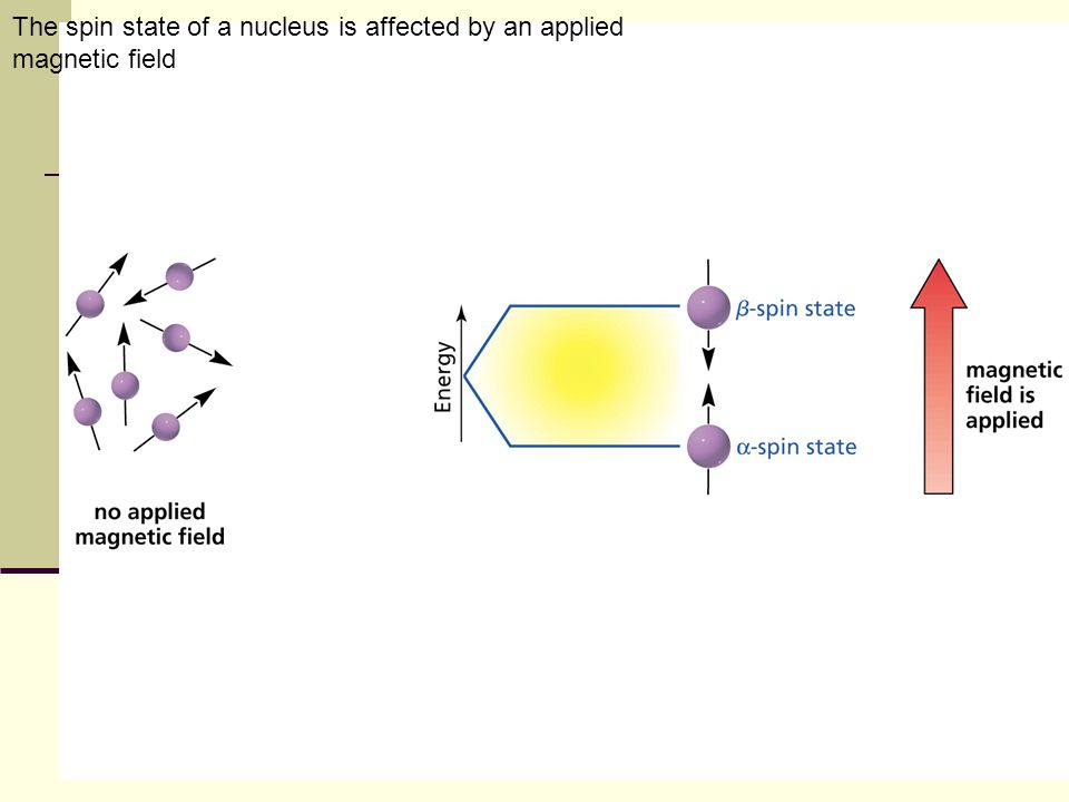 The spin state of a nucleus is affected by an applied