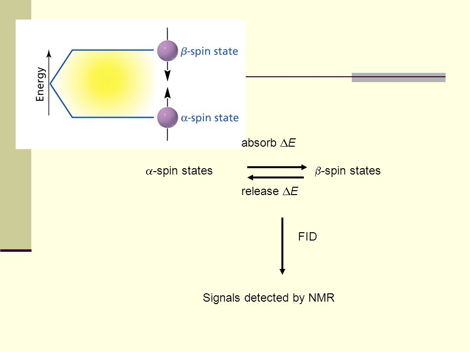 absorb DE a-spin states b-spin states release DE Signals detected by NMR FID