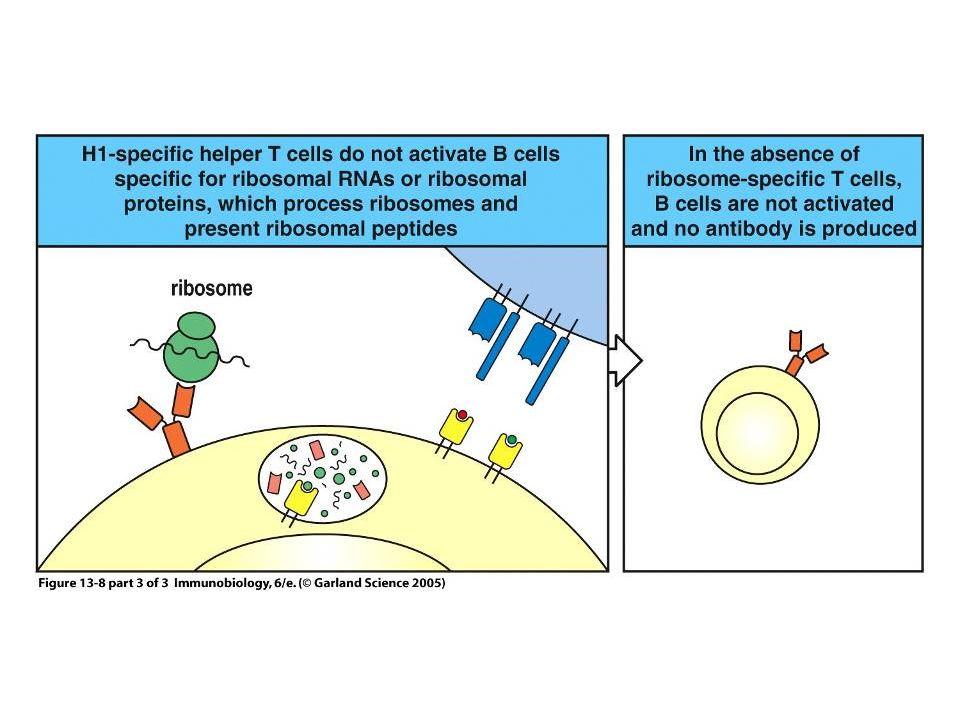 Figure 13-8 part 3 of 3