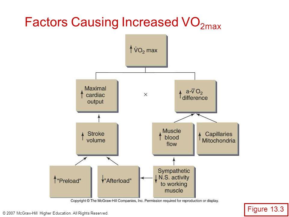 Factors Causing Increased VO2max
