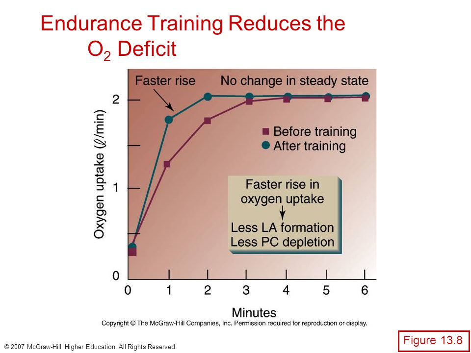 Endurance Training Reduces the O2 Deficit