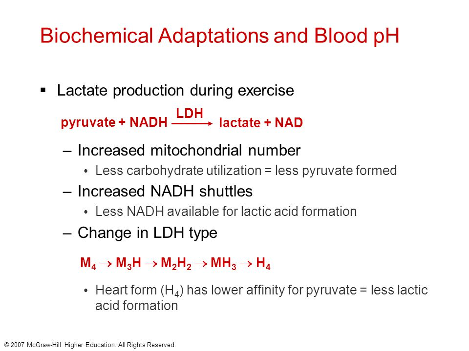 Biochemical Adaptations and Blood pH