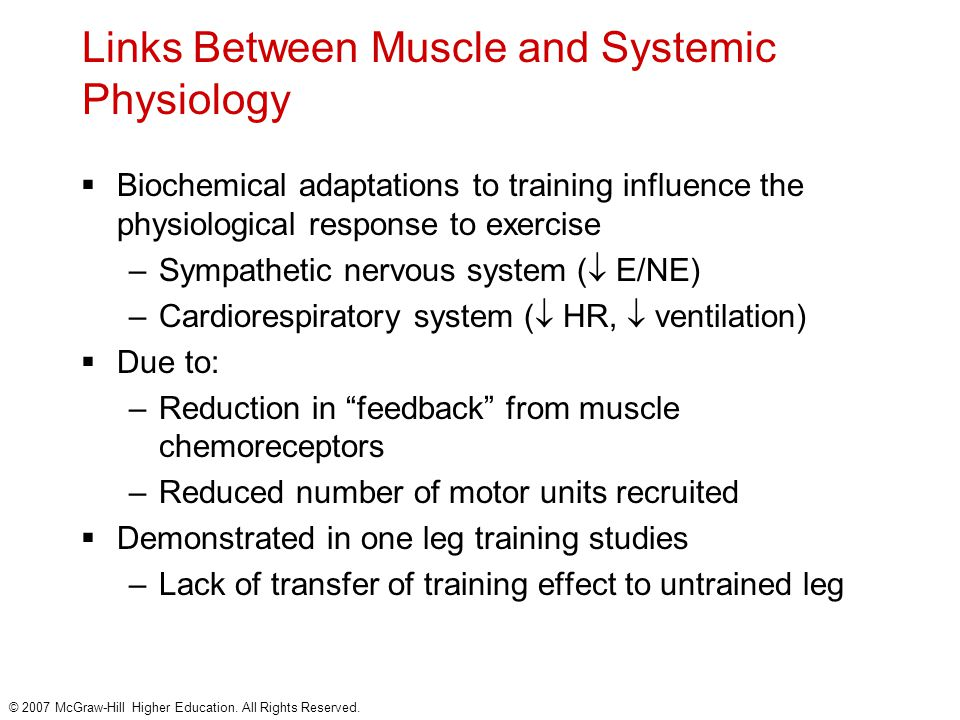 Links Between Muscle and Systemic Physiology