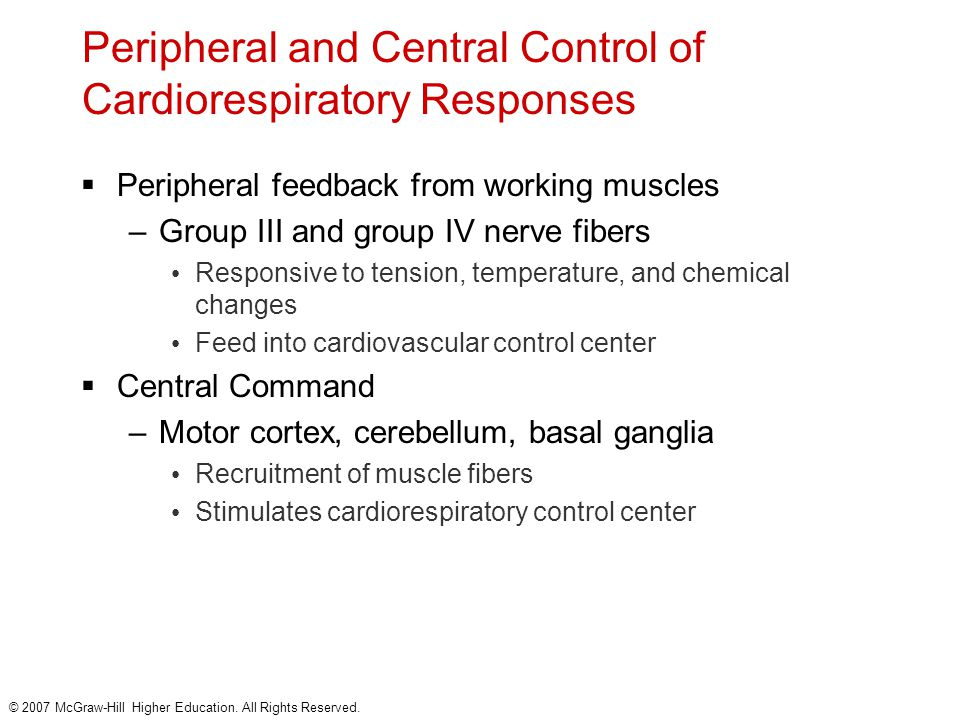 Peripheral and Central Control of Cardiorespiratory Responses