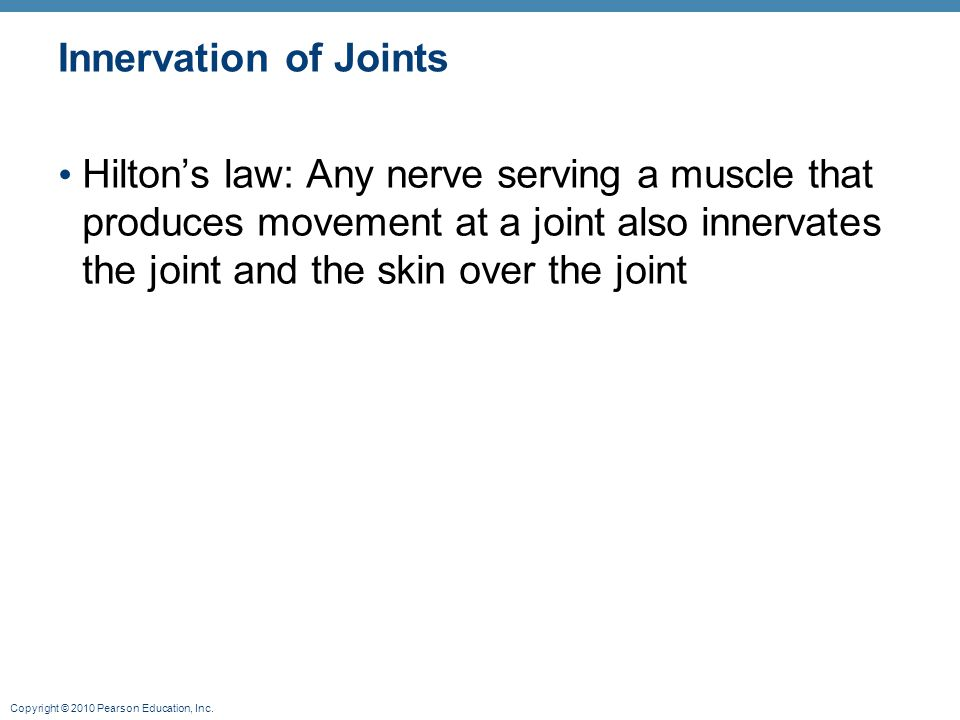 Innervation of Joints