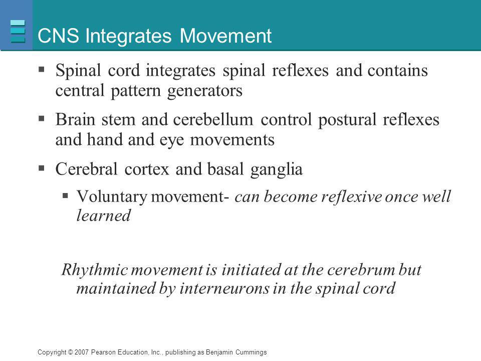 CNS Integrates Movement