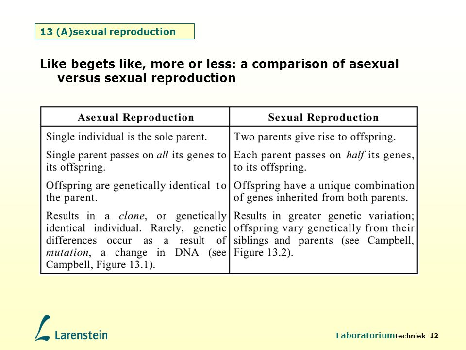 13 (A)sexual reproduction