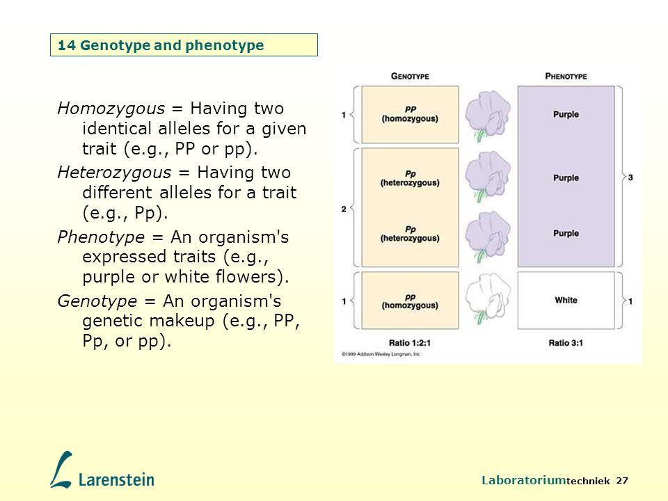 14 Genotype and phenotype