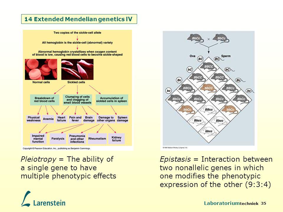 14 Extended Mendelian genetics lV