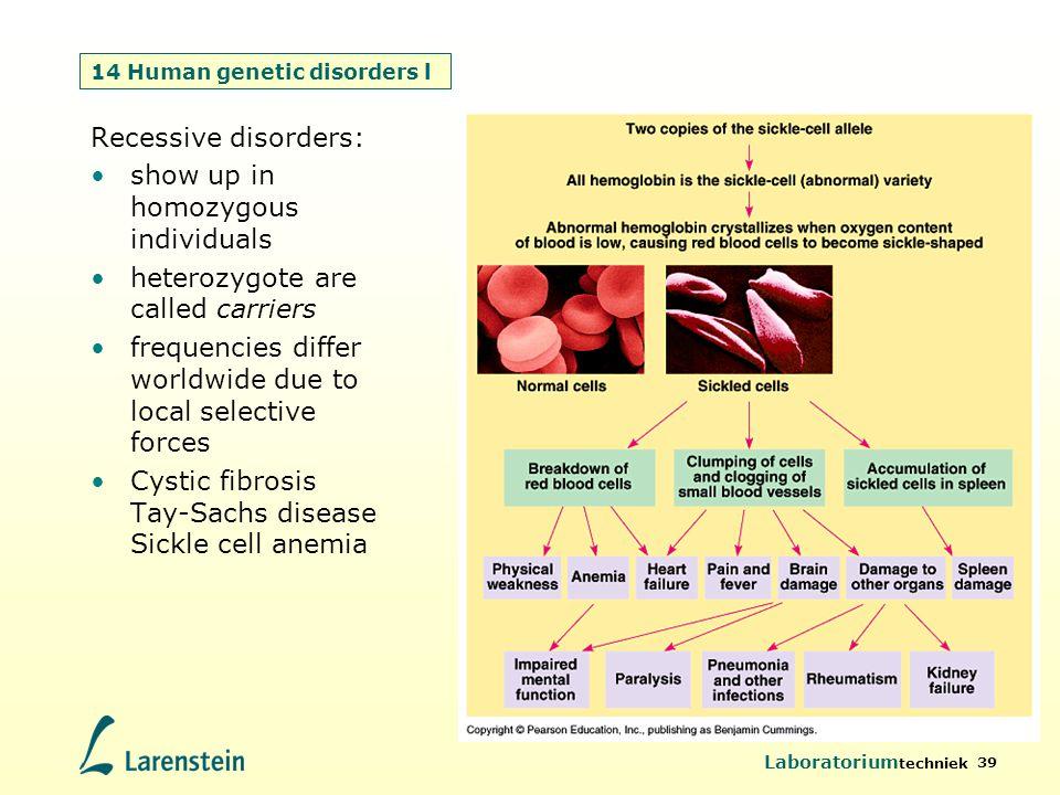 14 Human genetic disorders l