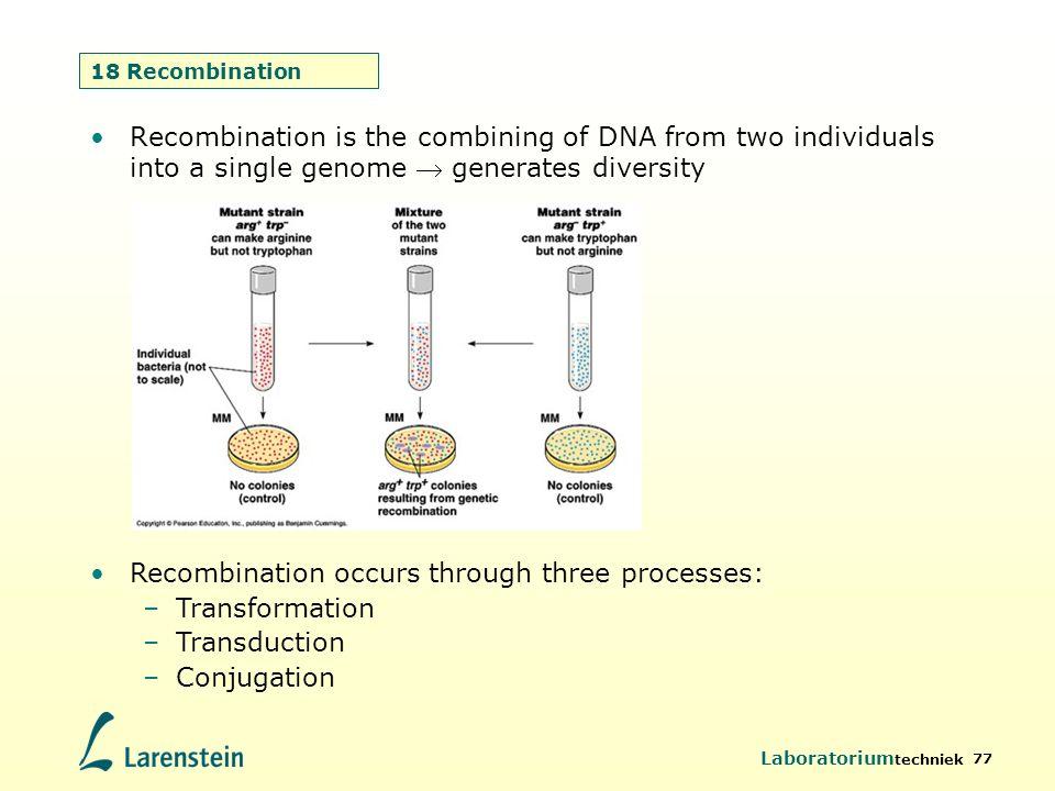 Recombination occurs through three processes: Transformation