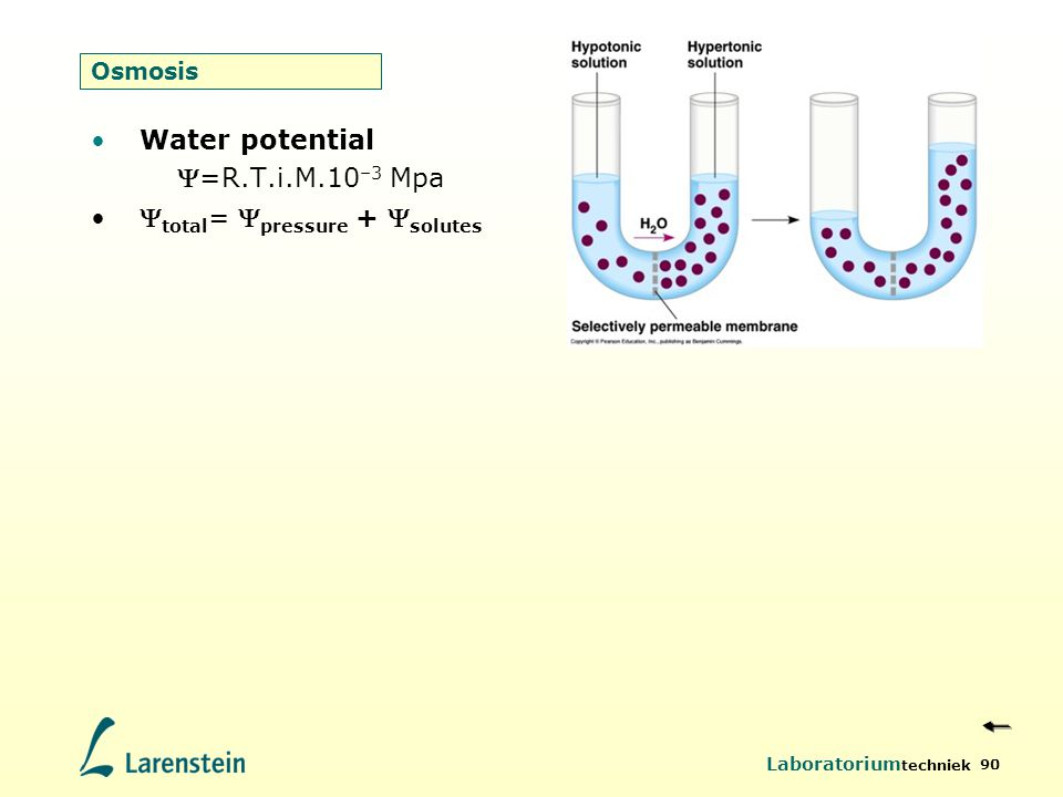 Water potential =R.T.i.M.10–3 Mpa